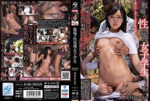 ดูหนังโป๊ออนไลน์ Porn xxx Jav Av APNS-197 Shiraishi Kannaดูหนังโป๊ฟรี